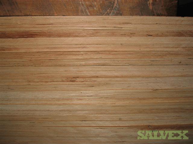 C Grade Plywood ~ Birch c grade plywood salvex