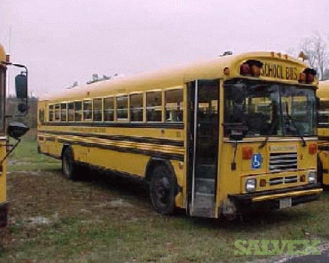 1996 Blue Bird Bus