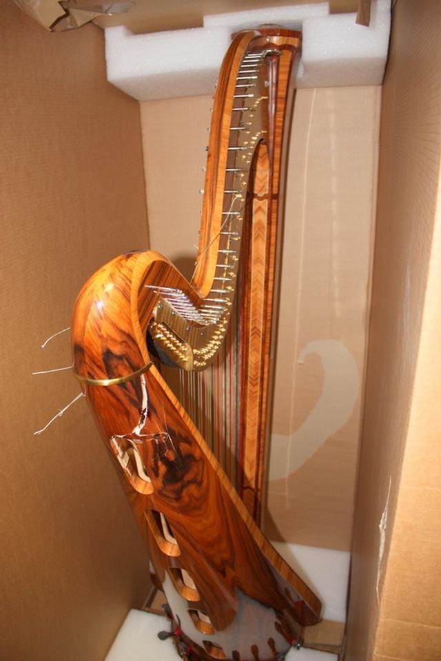 Arianna Salvi 47-String Concert Grand Pedal Harp