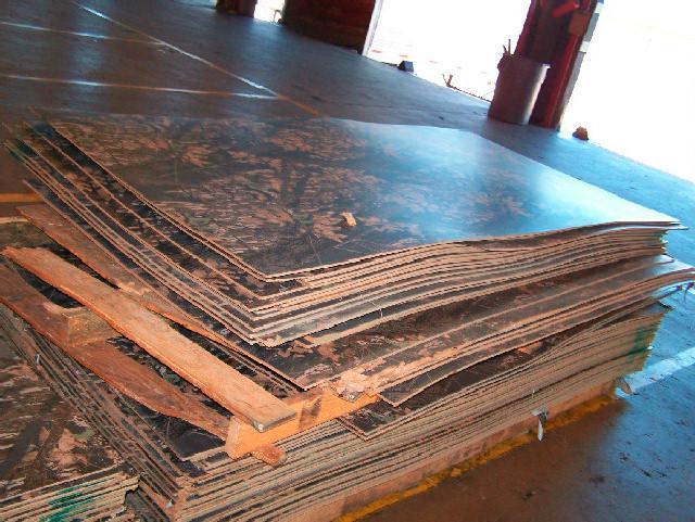 Panels Mossy Oak Camo Pattern 370 Sheets Salvex