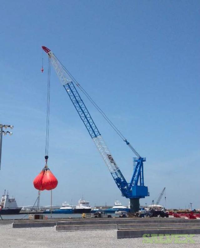 Techcrane L300-160 ASME Shipboard Pedestal Crane