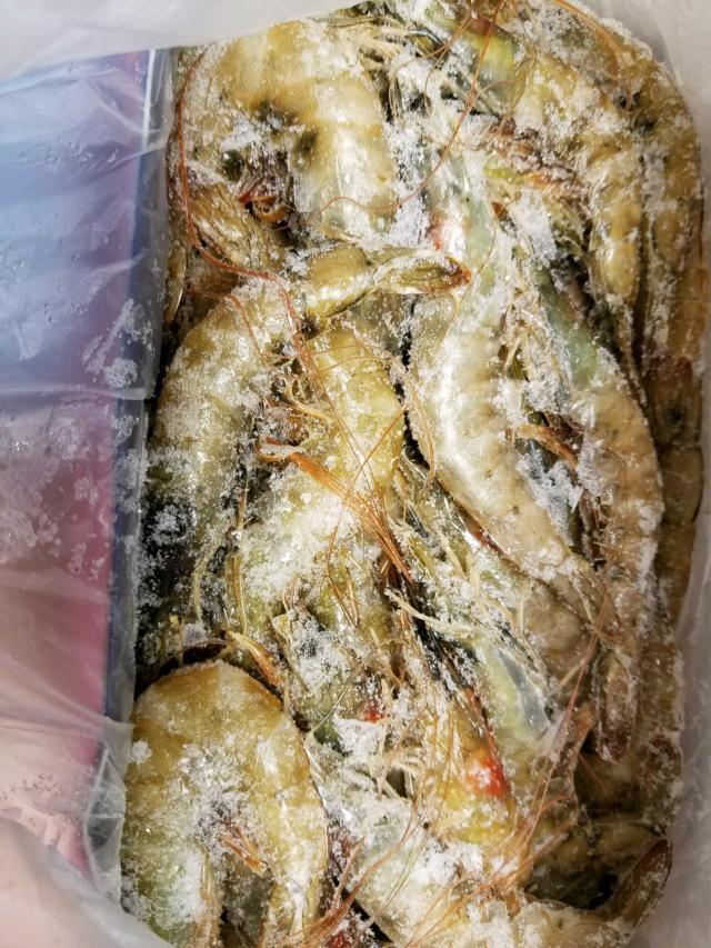 White Head Shrimp (5368 Lbs)