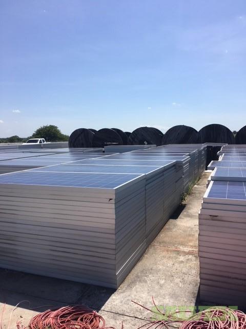 305W Crystalline PV Solar Panels, $.25 per watt 10,000 Panels Located Houston, TX (Any Quantity)