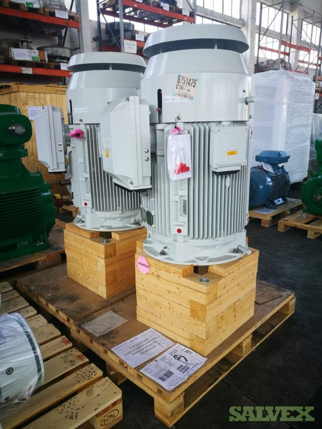 Centrifugal Pump Motors (5 Units)