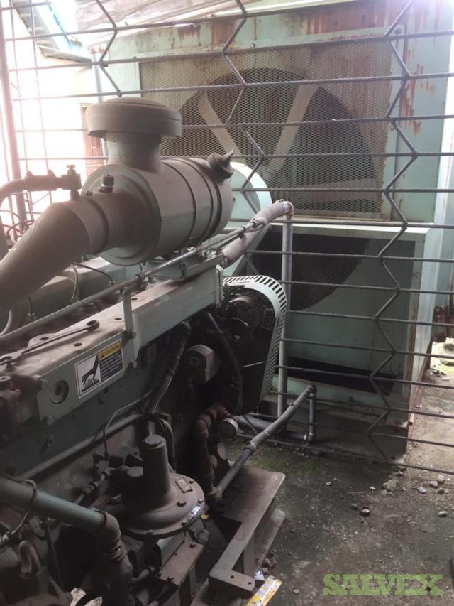 Marathon Magnamax Natural Gas Generator (Lagos, Nigeria)