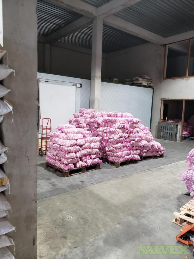 Fresh Garlic (29,000 Kgs)
