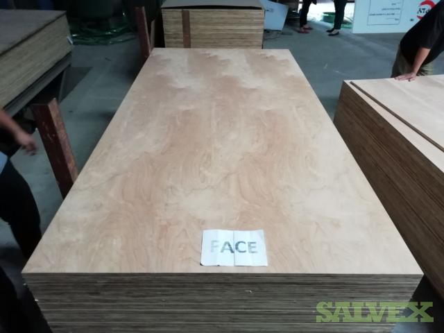 Natural Birch Plywood, 19mm (550 Sheets)