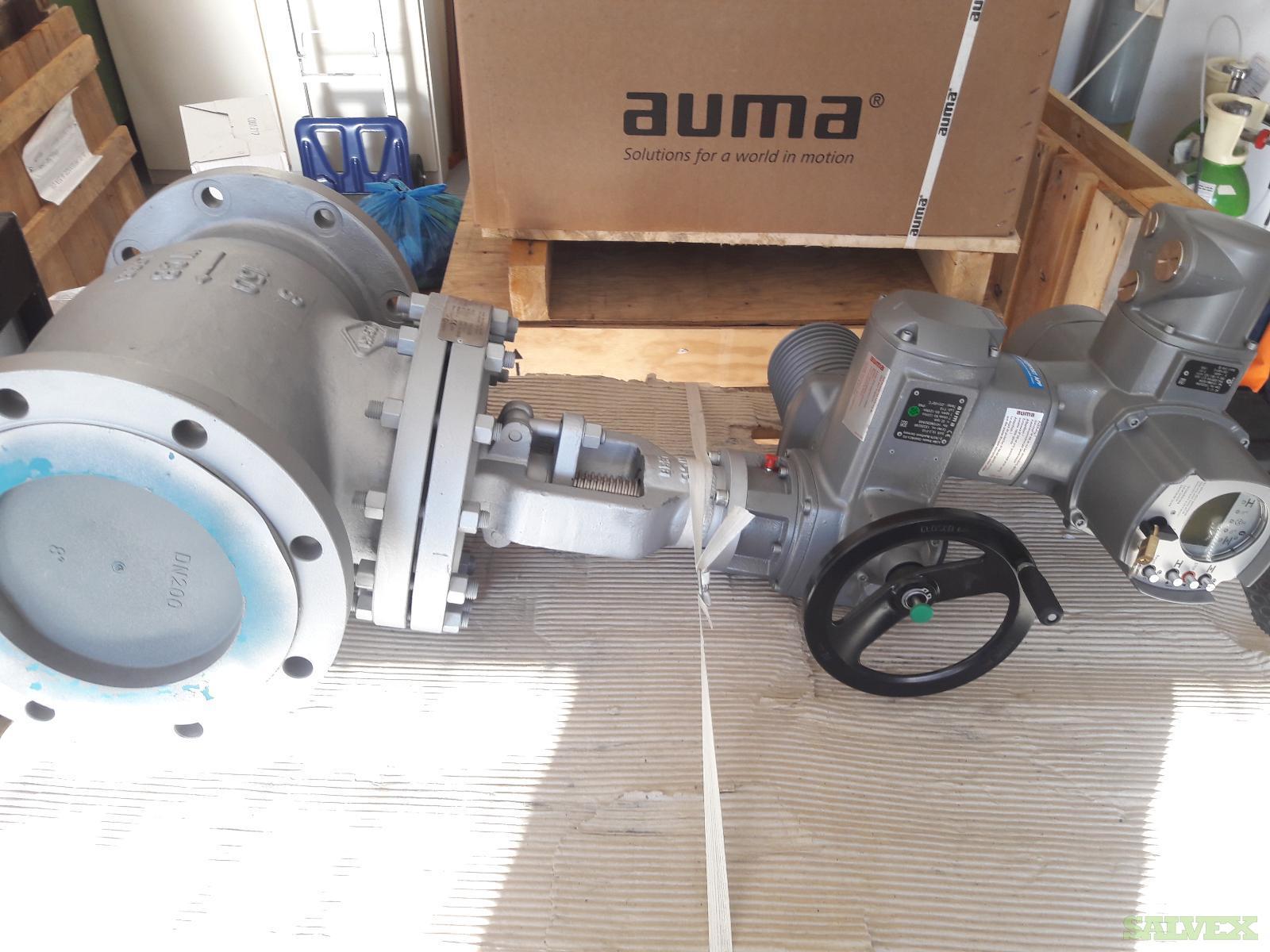 Globe Valve & Auma Actuator (2 Units)