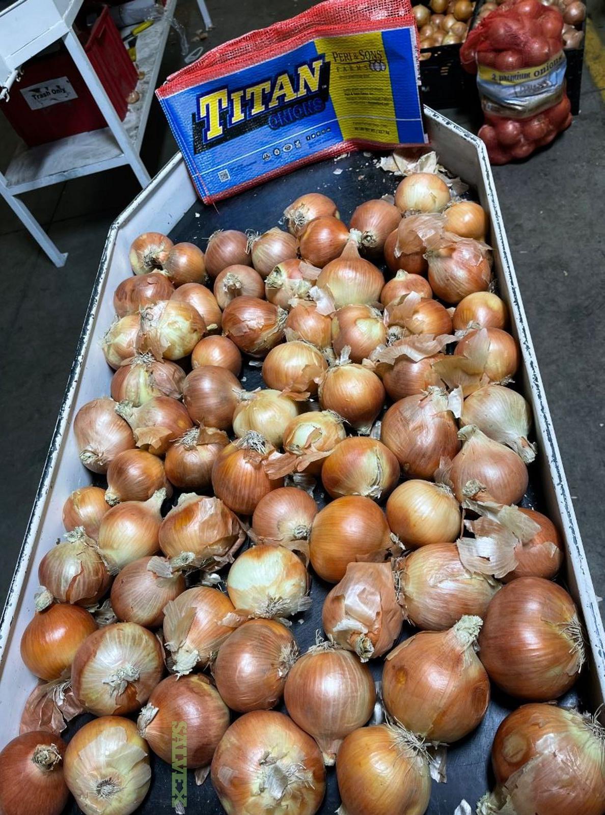 Yellow Jumbo Onions (850 Bags of 50lbs)