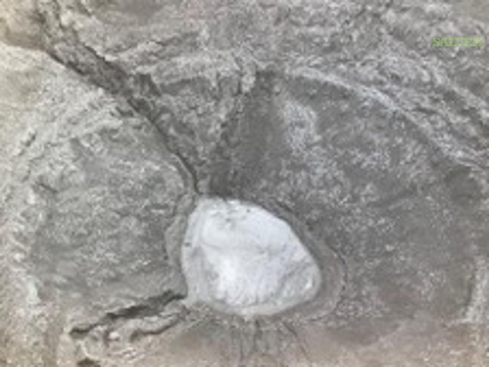 Foxleigh Premium Coal & German Creek Coking Coal (60,680 MT)
