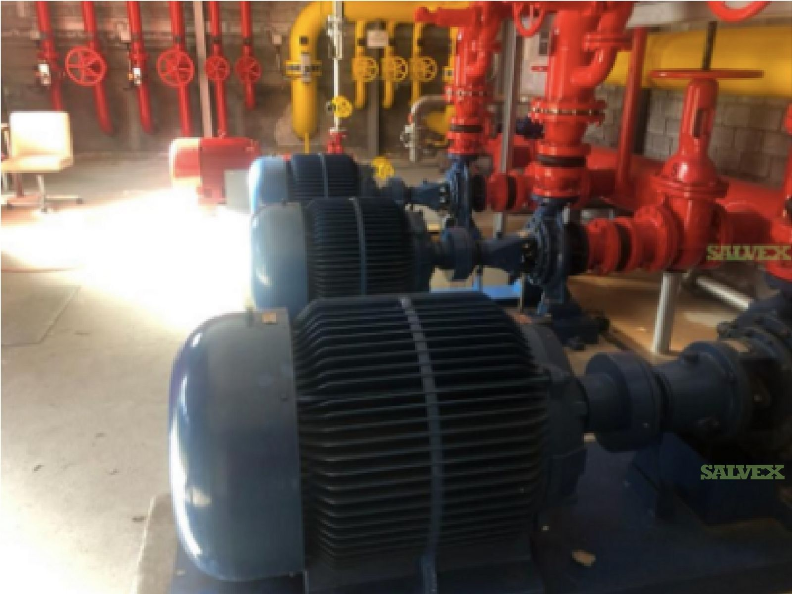 Halberg & Finder Water Pumps (4 Units)