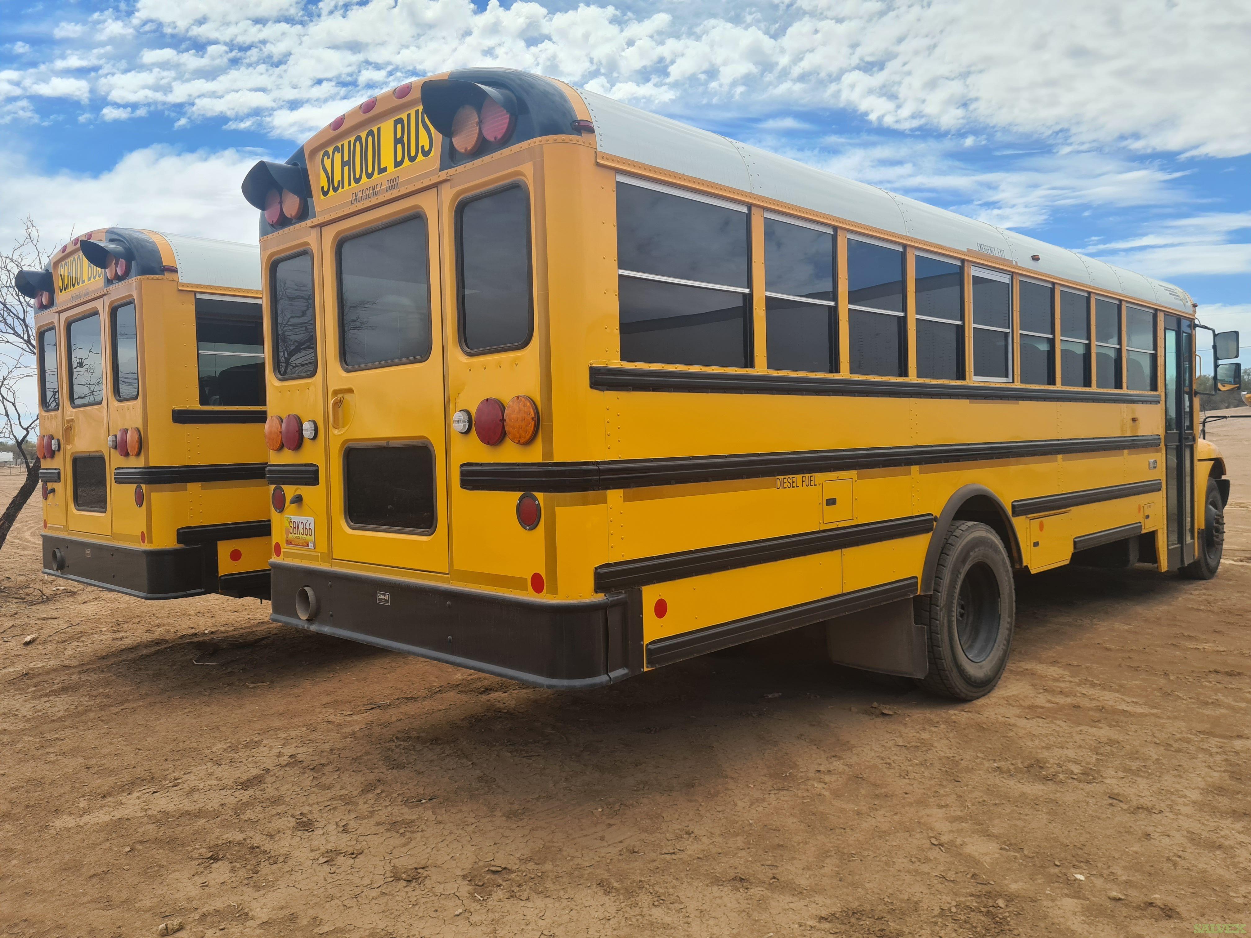 International School Bus  2019