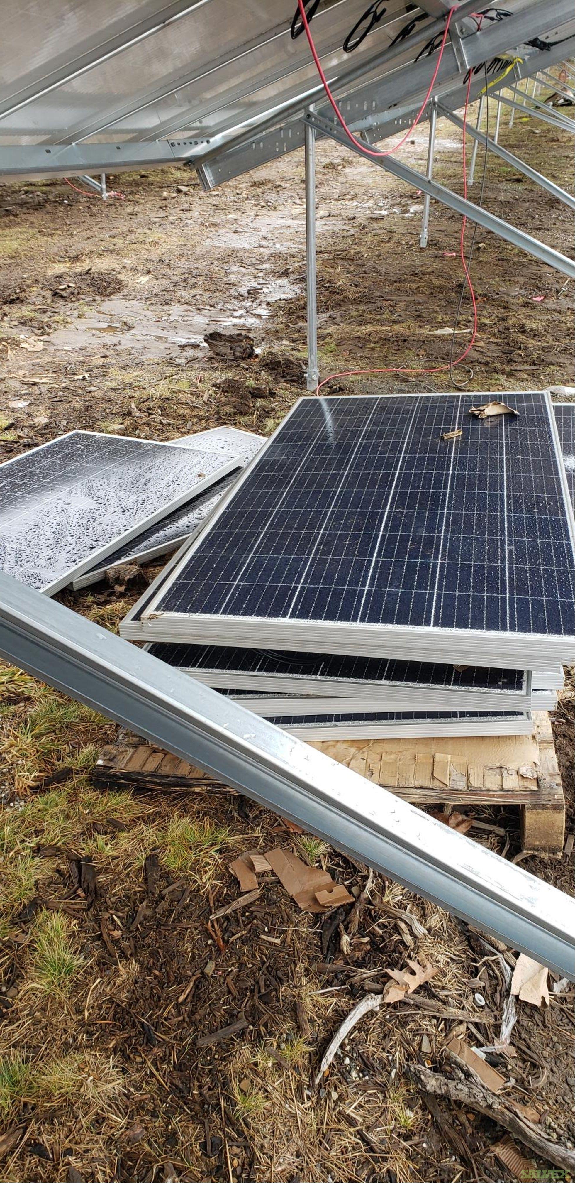 Trina & LG 330-405W Bifacial Solar Modules (650 Modules)