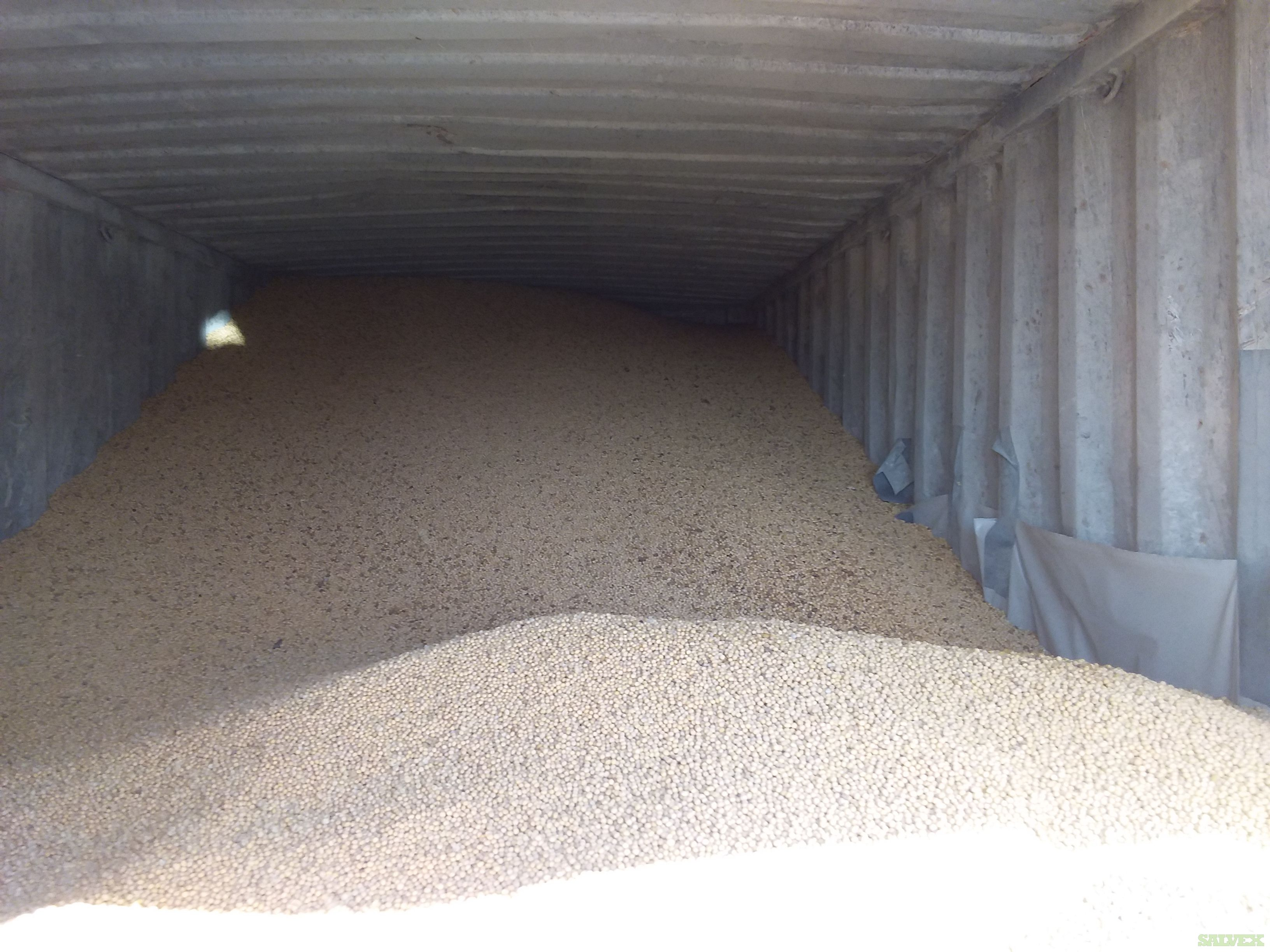 US Yellow Soybeans, 748 Bushels